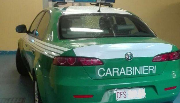 Auto verde Carabinieri