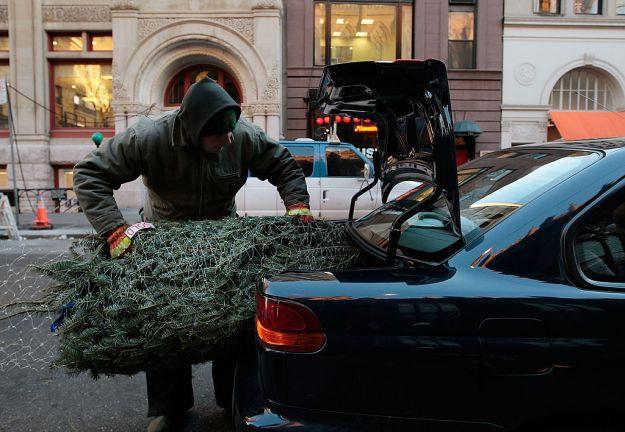 albero di natale in auto